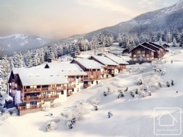 Fabulous 3 bedroom apartments ski in / ski out in a new development.
