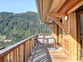 A modern and spacious duplex apartment close to the centre of Chatel
