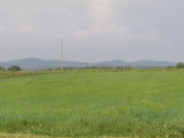 Flat leisure land of 10 000 m² located 500 m of a village with all amenities.