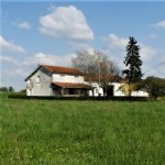Farmhouse for sale 4 bedrooms ,15826m2 land ,Over 1 acre land