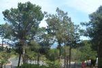 Apartment - Banyuls-sur-mer