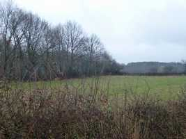 2 acre Land in the Countryside near Châteaumeillant (NOT building land).
