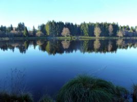 PRICE REDUCED: Wonderful Opportunity to Own a Prestigious, Well Established Large Carp Fishery